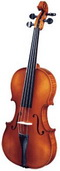 Подбор и выбор скрипки